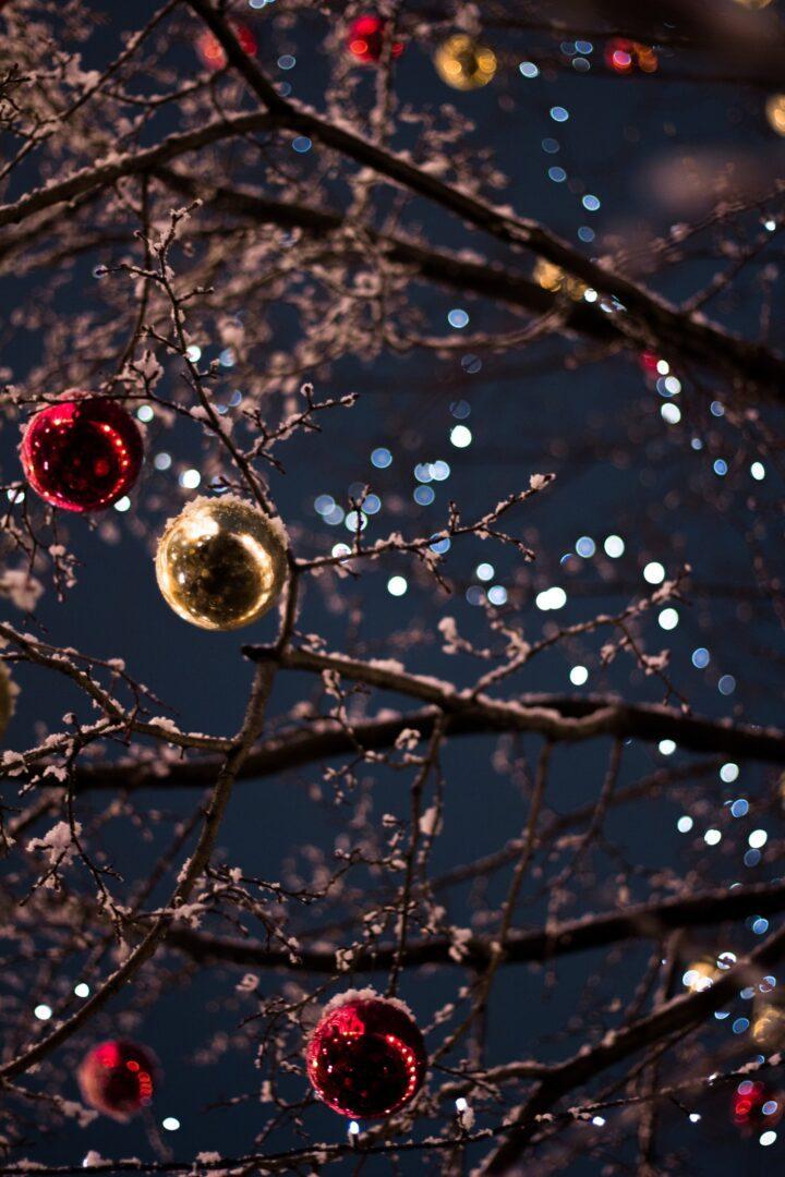 Things To Do Before Christmas -Christmas Lights