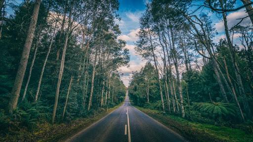 The Most Beautiful Roads Of Australia