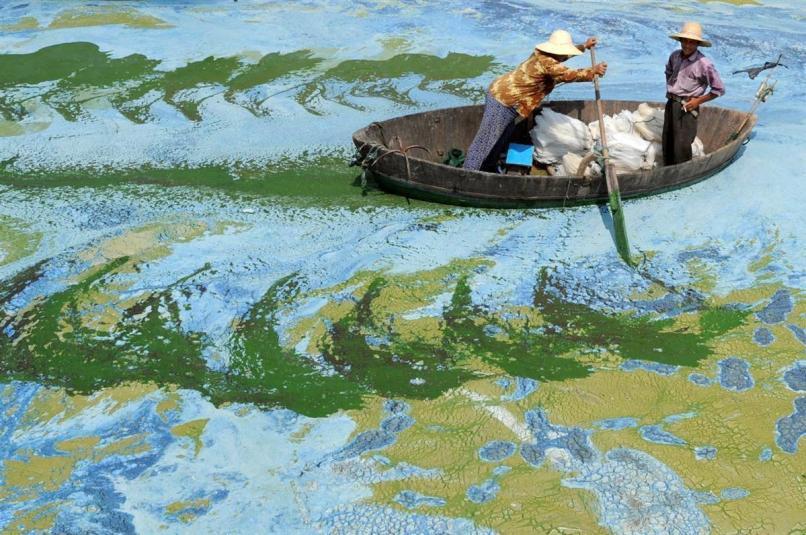 23. Chaohu Lake, China. Algae-filled Water