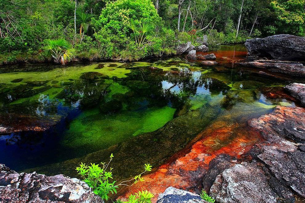 31. Cano Cristales River, Meta, Colombia