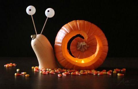 Flip A Pumpkin