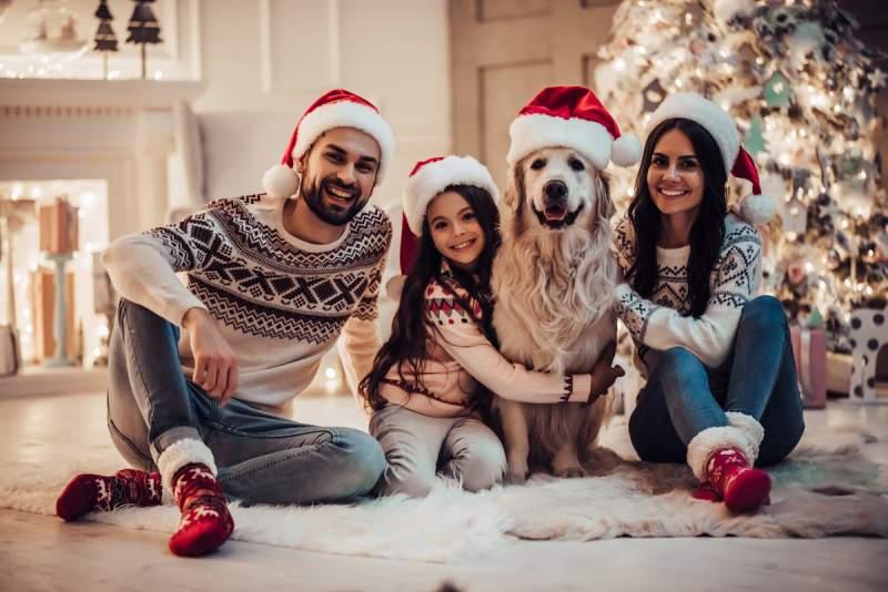 dog christmas puns