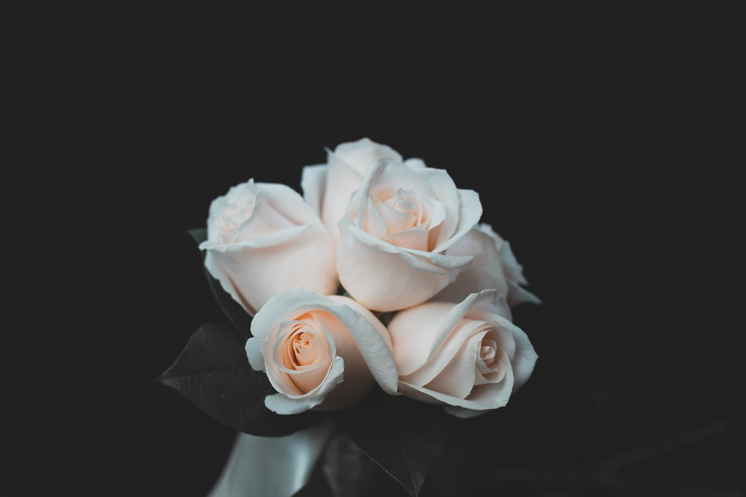 Trust Flowers