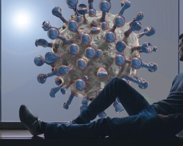 The Coronavirus & Our Immune System: Everything We Know So Far