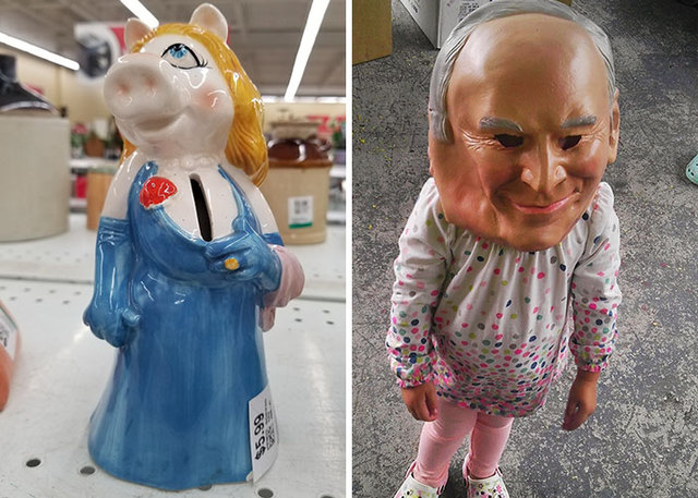 Funny Thrift Store Pictures