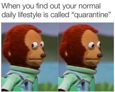 Hilarious Quarantine Memes