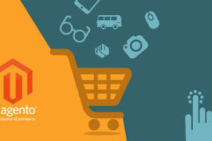 Why Magento Developer Is Important For Your E-commerce Business